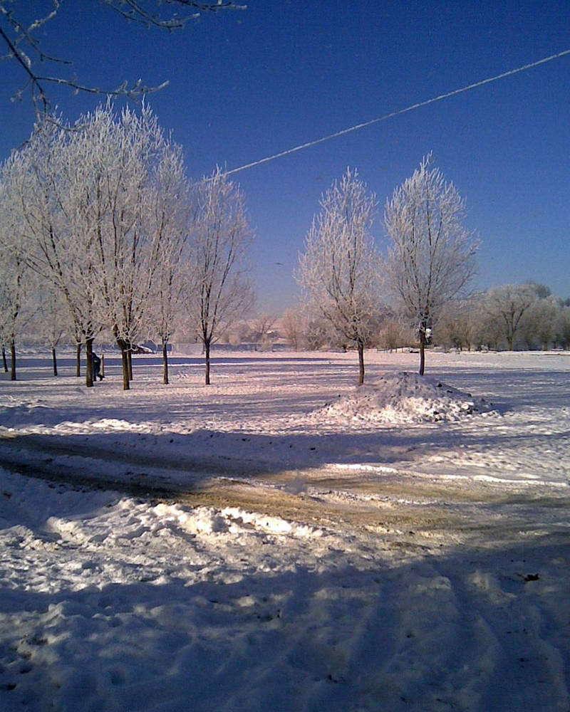 Галичский район, зимние Дубовцы