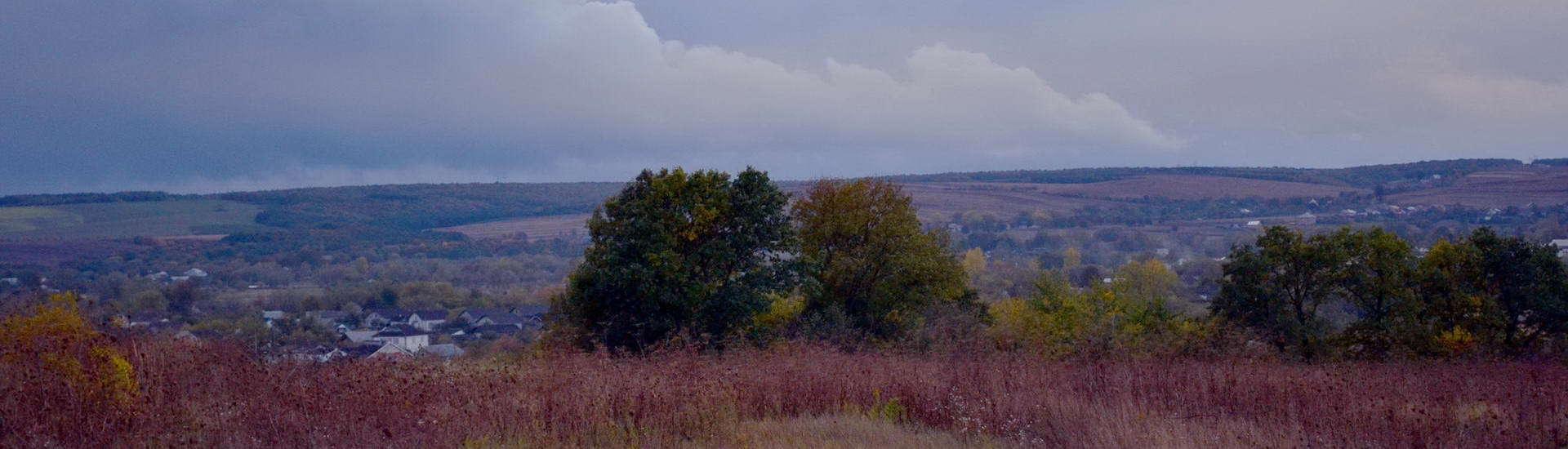 Галичский район, панорама села Дубовцы