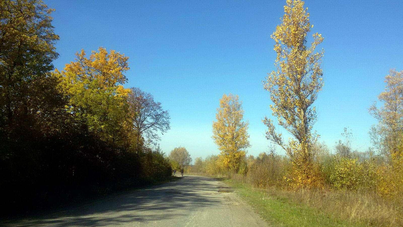 Село Дубовцы, Галичский район