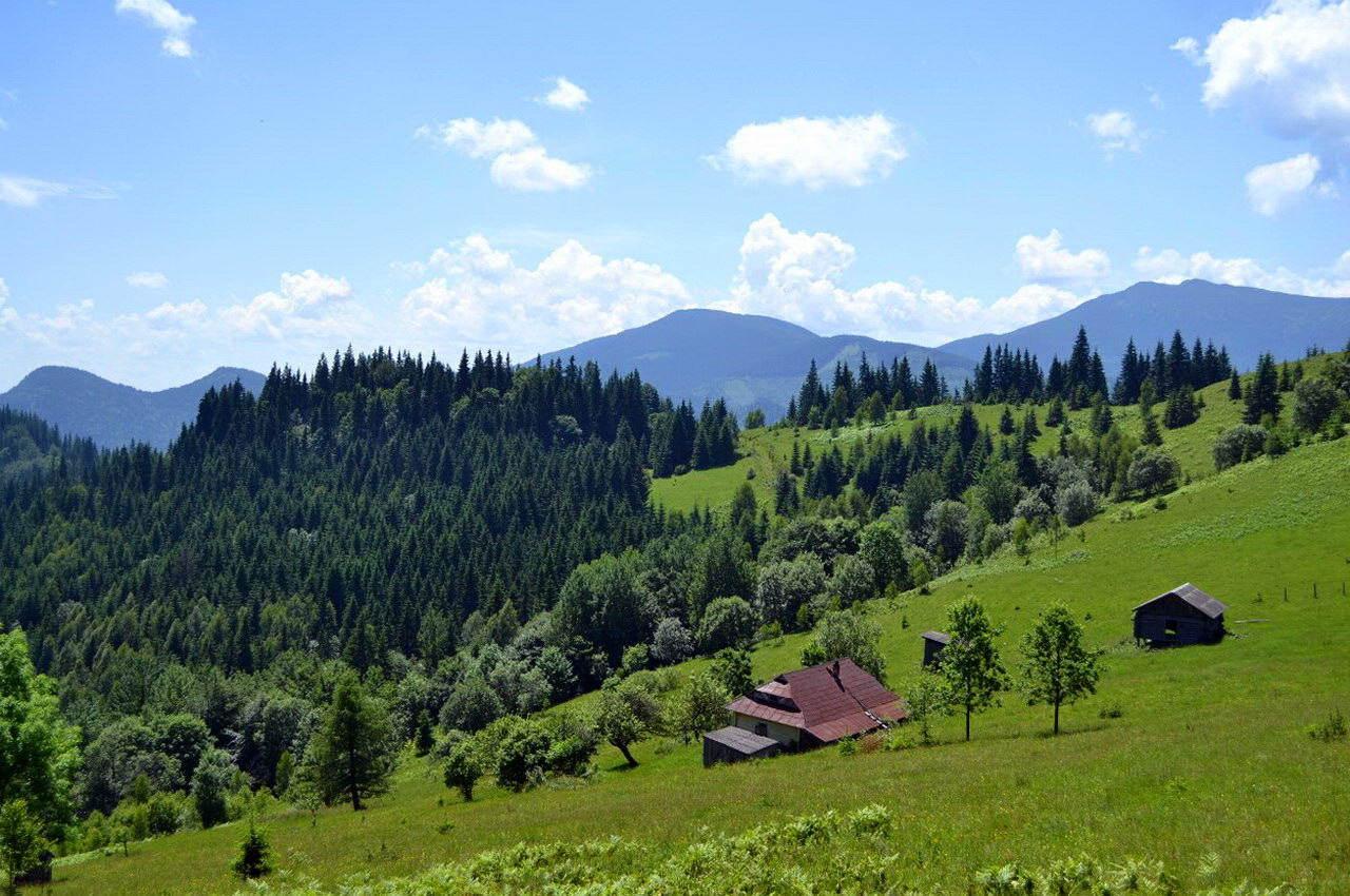 Гірське село на Прикарпатті - Дземброня