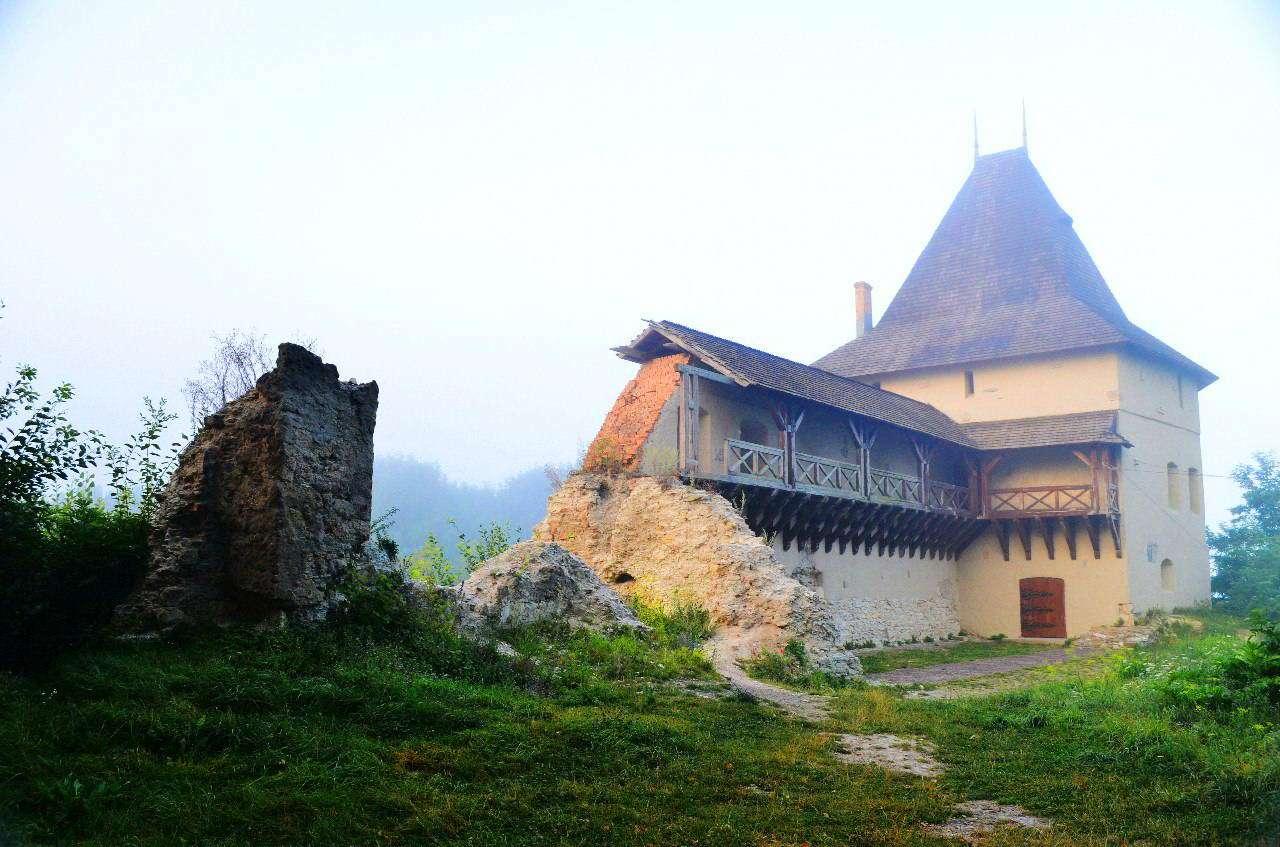 м. Галич, Старостинський замок
