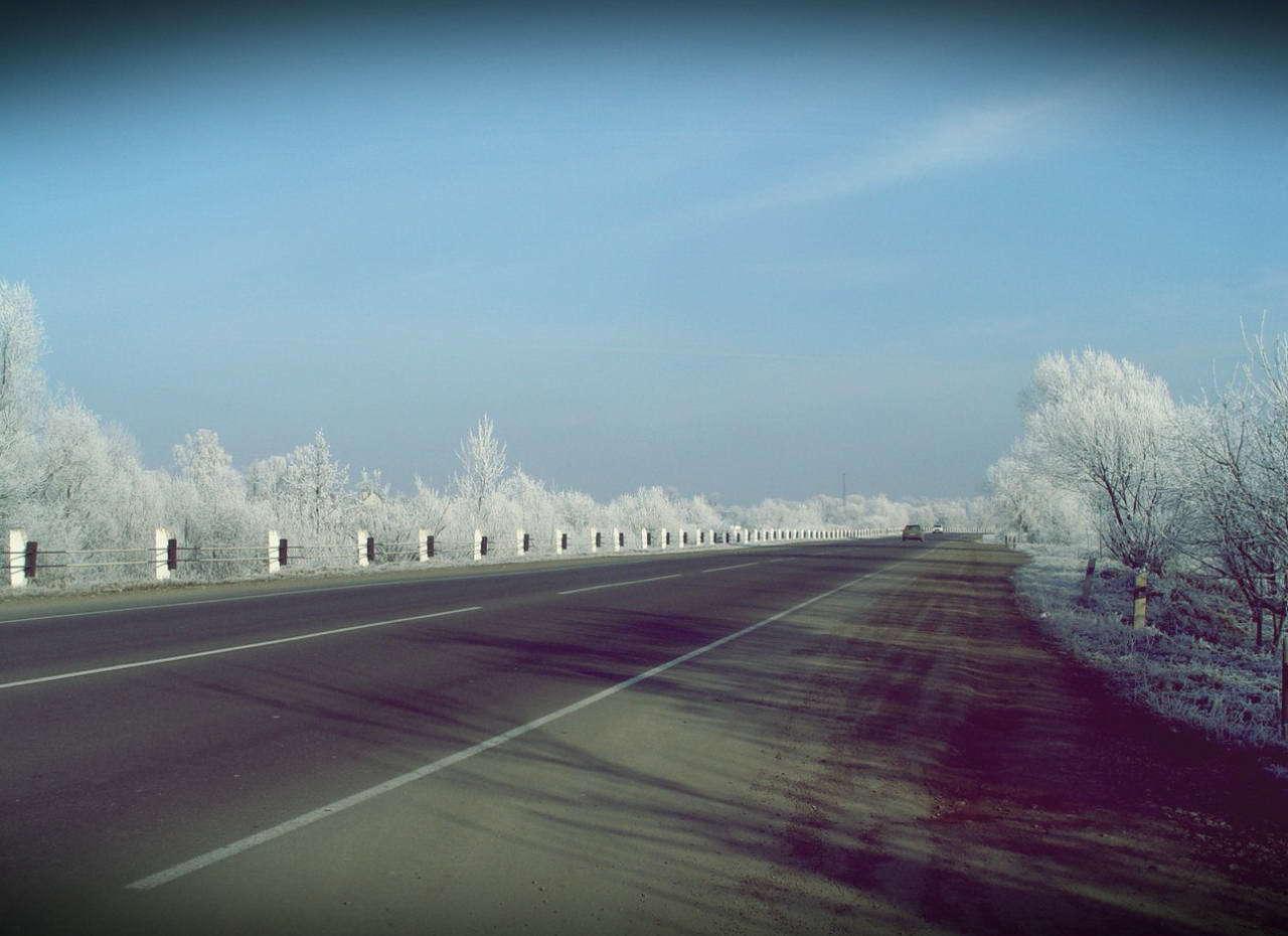 Дорога в м. Галич. Зимовий іній