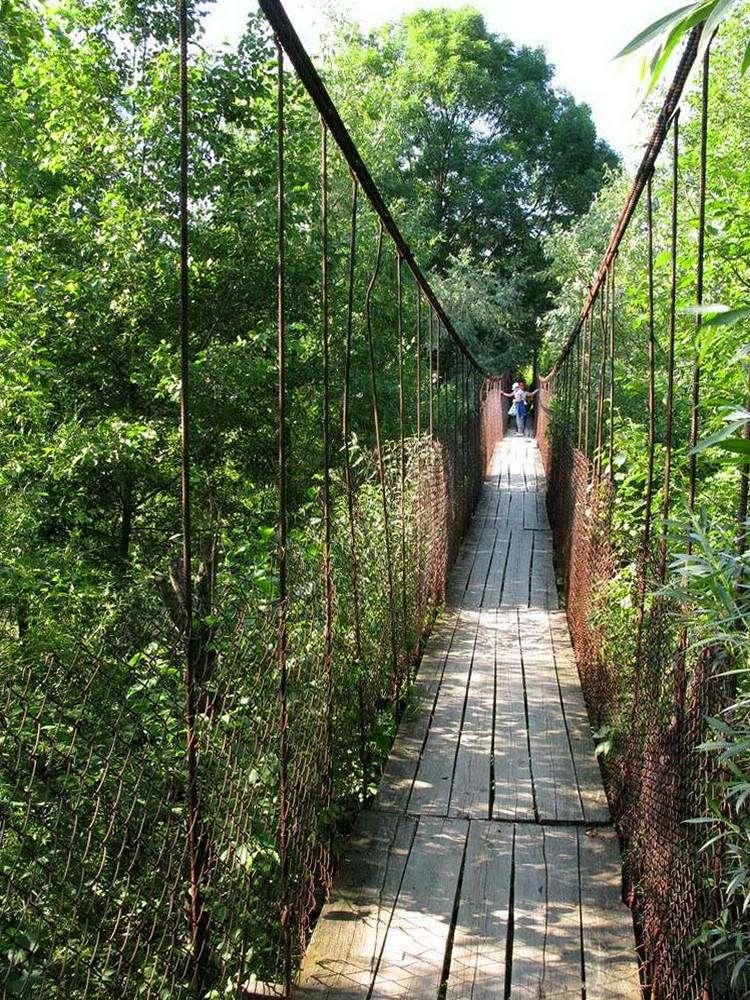 пгт Яблунов, мост через реку Лючка