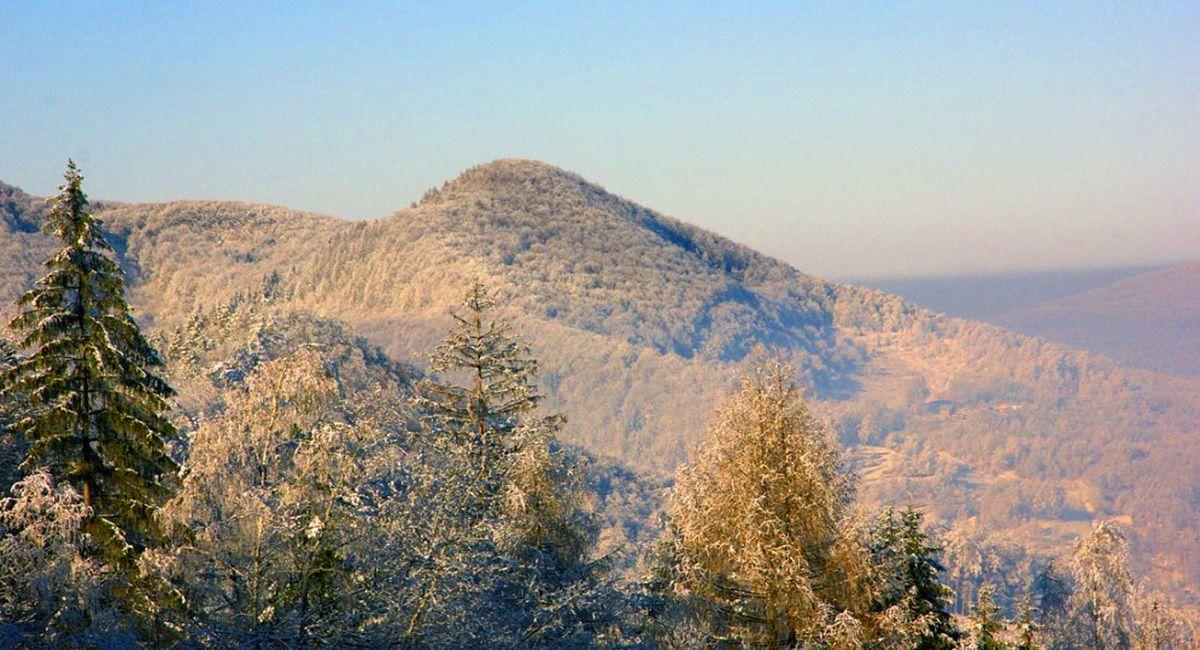 Гора Сопка (Зинякив верх)