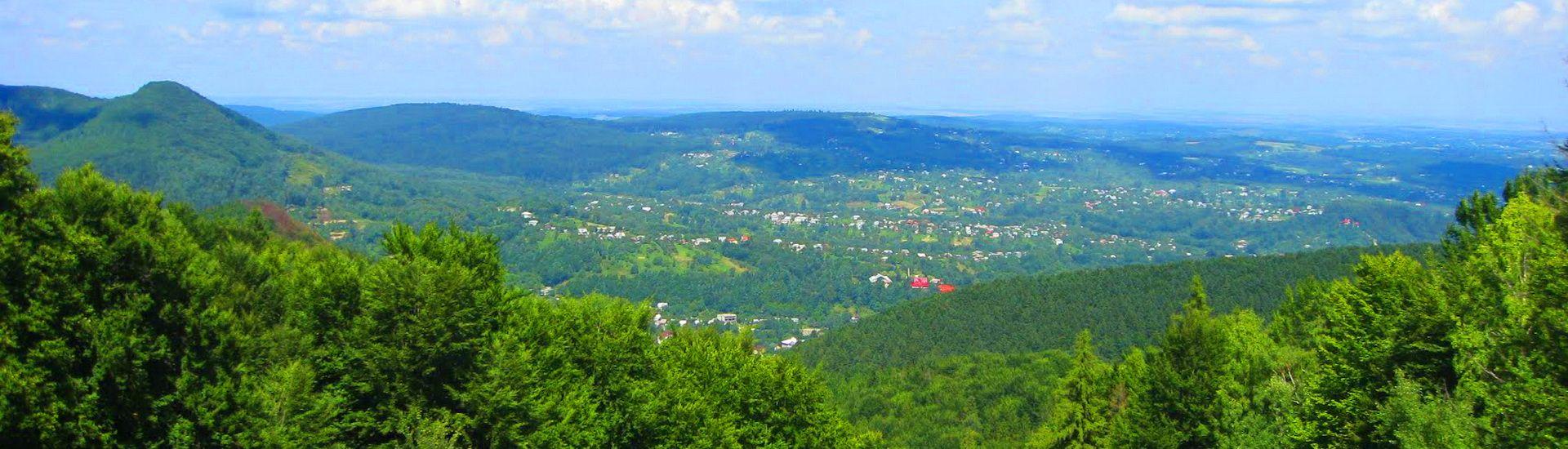 г. Косов, панорама
