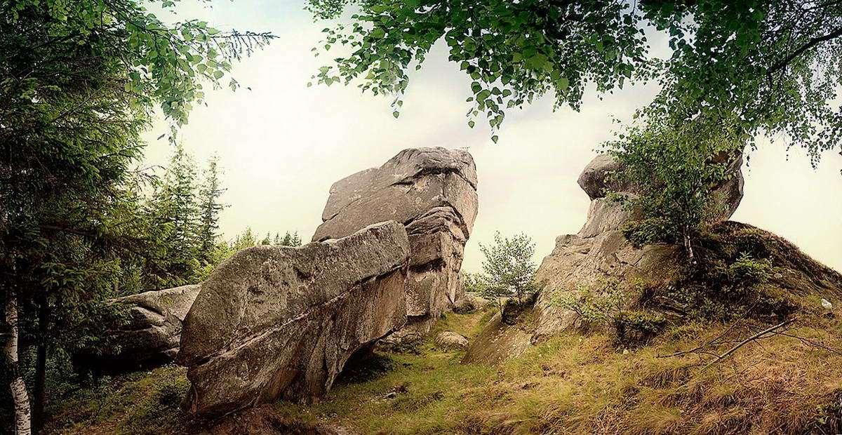 На околицях карпатського села Космач