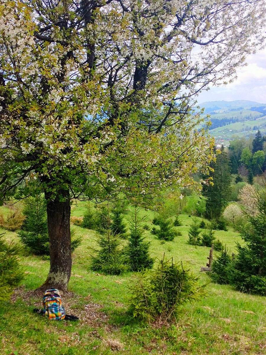Гірське село Красник