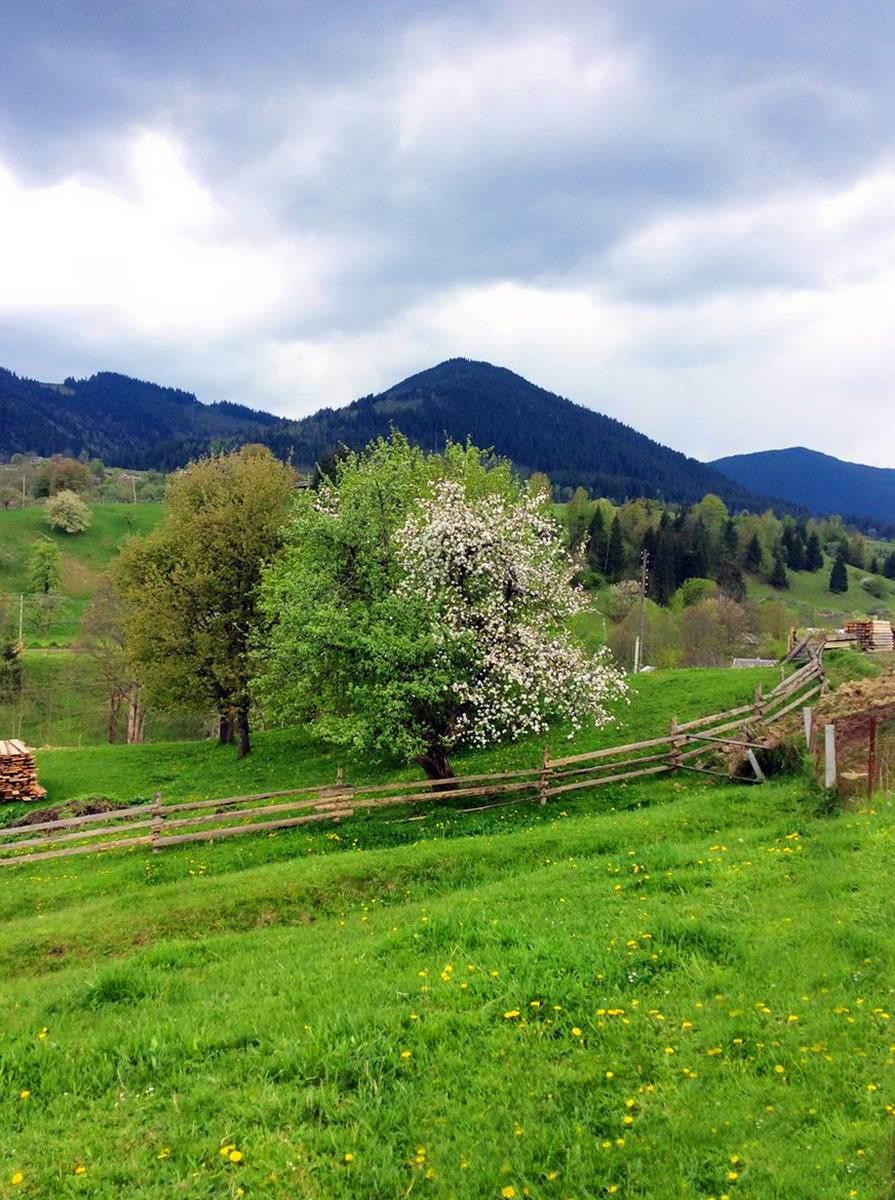 Красник - гірське село на Прикарпатті
