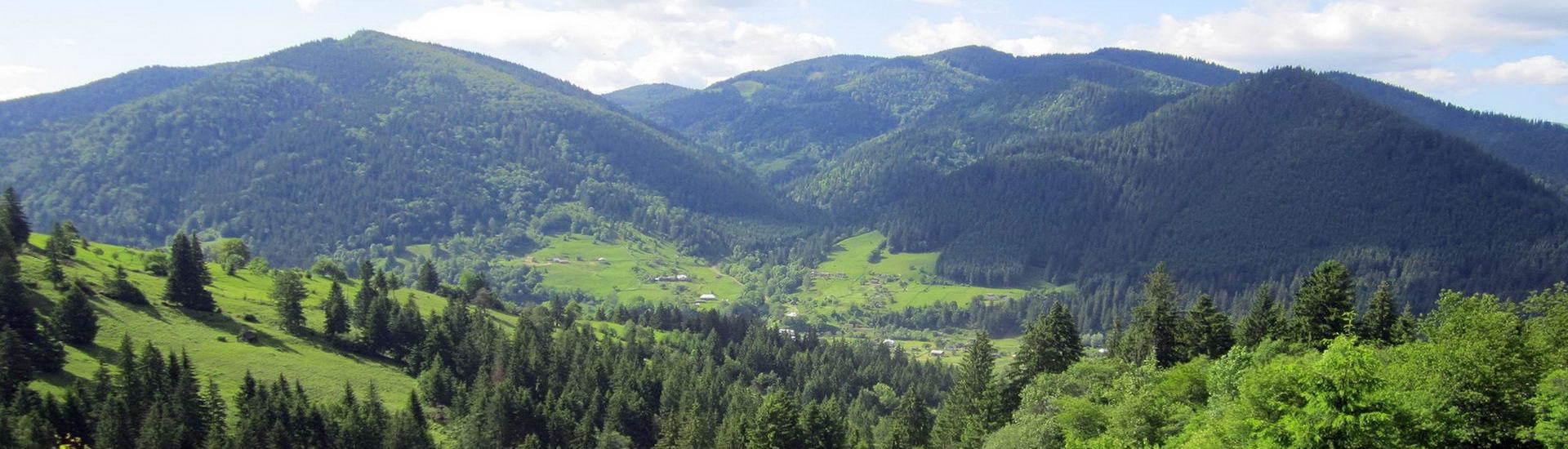 Карпатське гірське село Криворівня