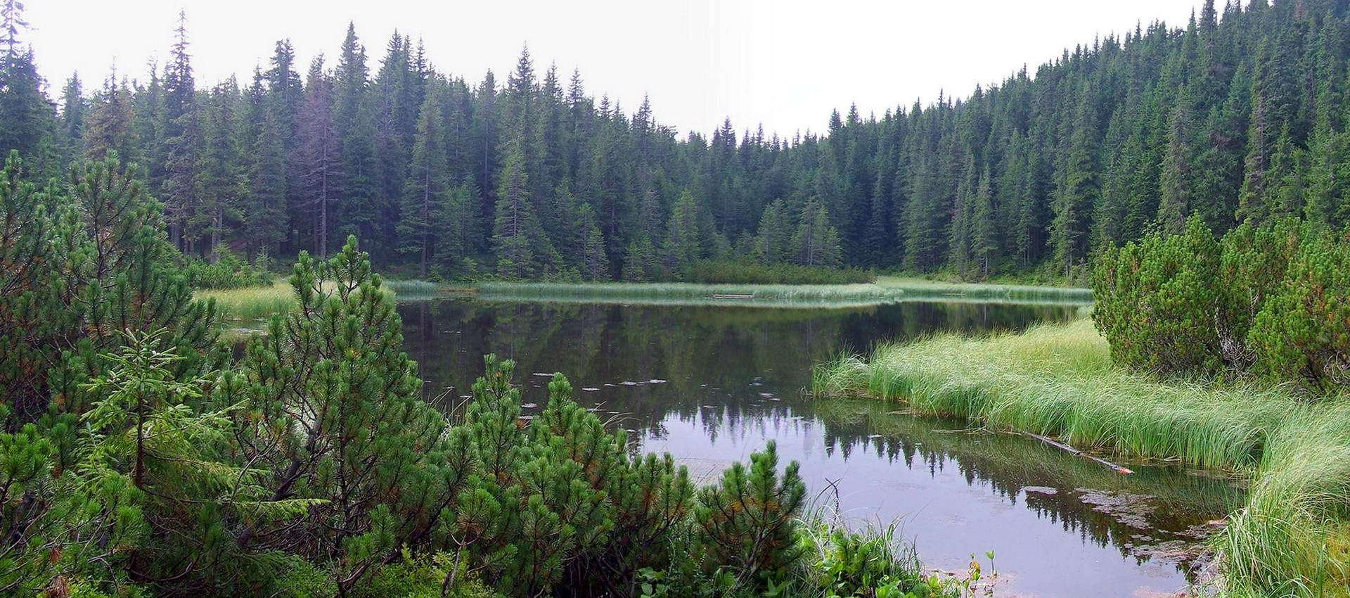 Озеро Марічейка на шляху до вершини Піп Іван Чорногірський