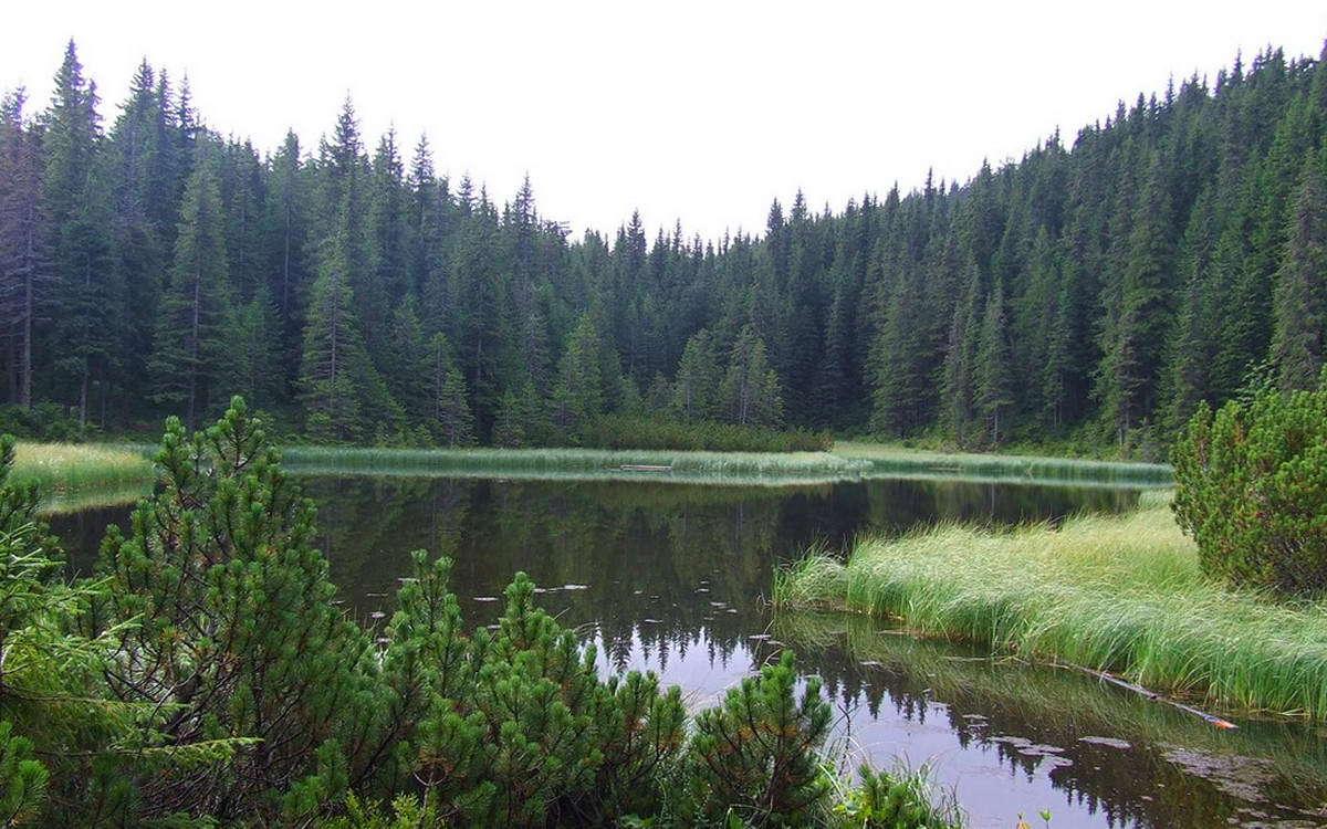 Озеро Марічейка, маршрут на Піп Іван Чорногірський
