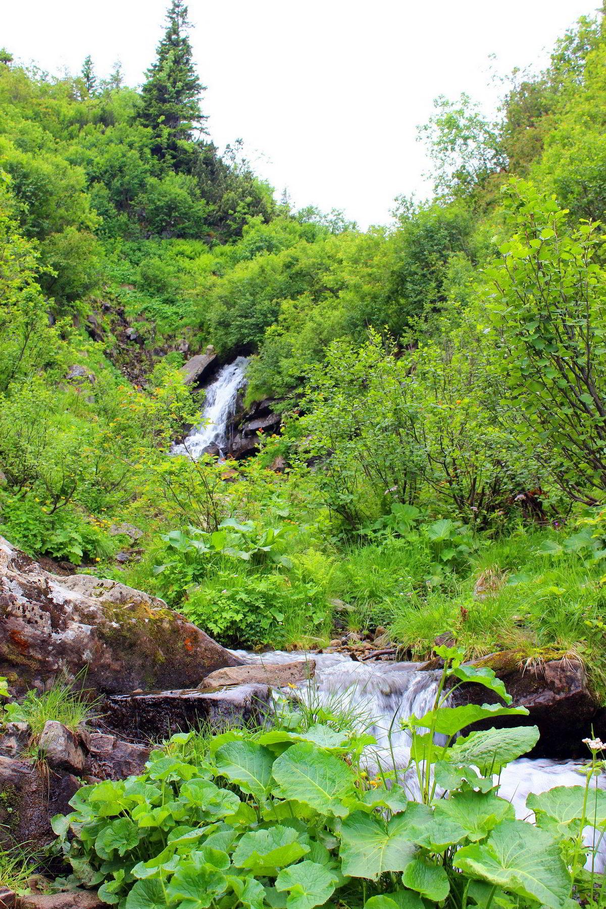 Маршрут Чорногірським хребтом, Дзембронські водоспади