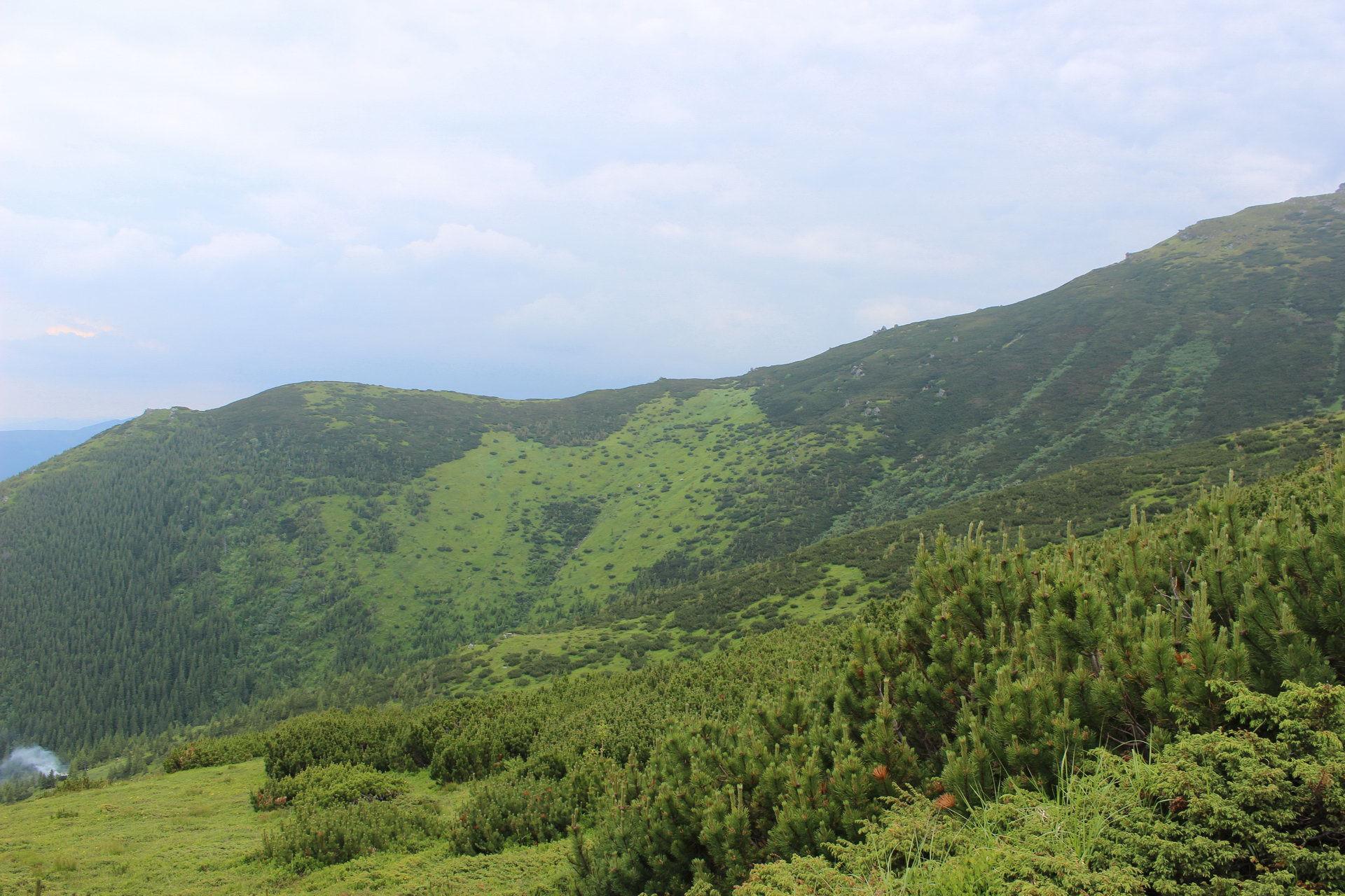 Маршрут Чорногорою, панорама із Чорногірського хребта