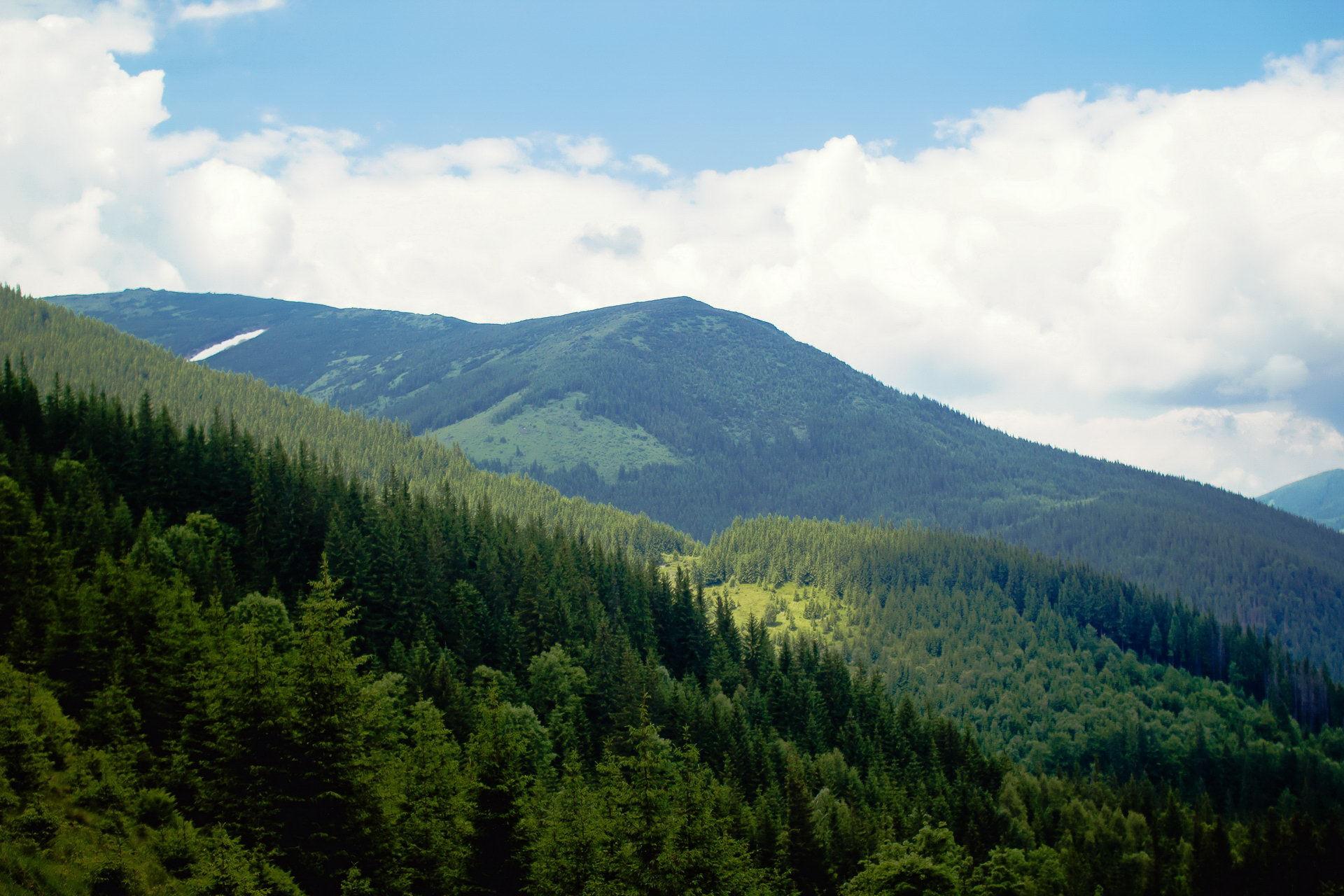 Маршрут Чорногорою, підйом на гору Вухатий Камінь