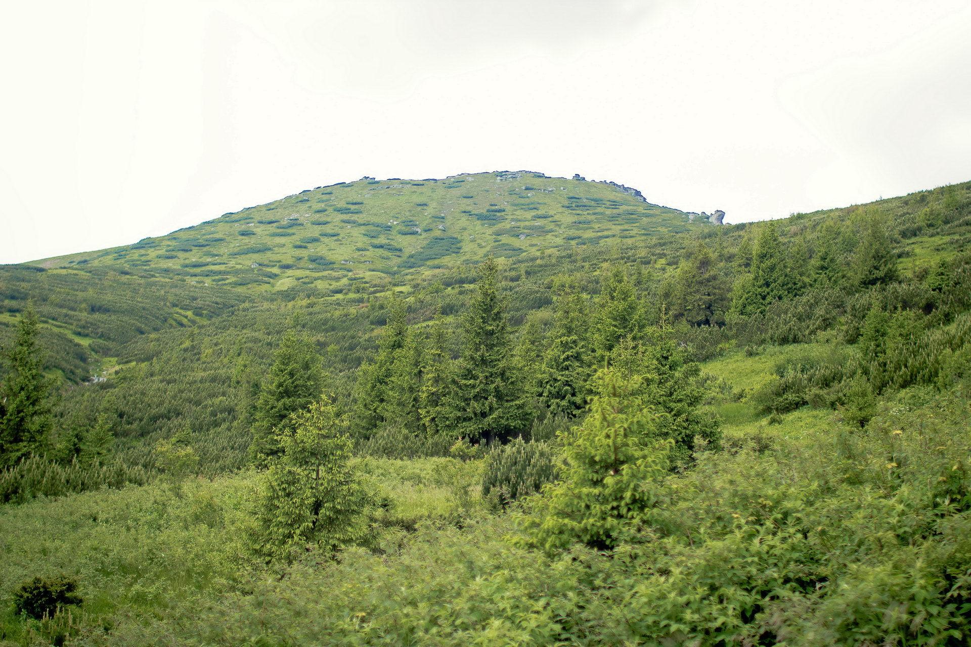 Підйом на гору Вухатий Камінь, маршрут Чорногірським хребтом
