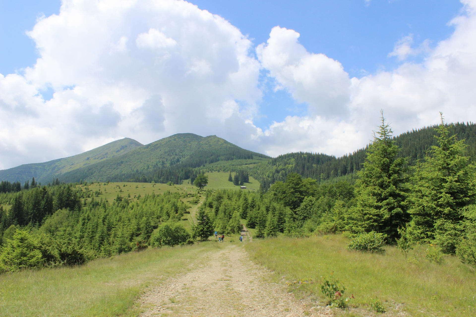 Вид на гору Смотрич, маршрут Чорногірським хребтом