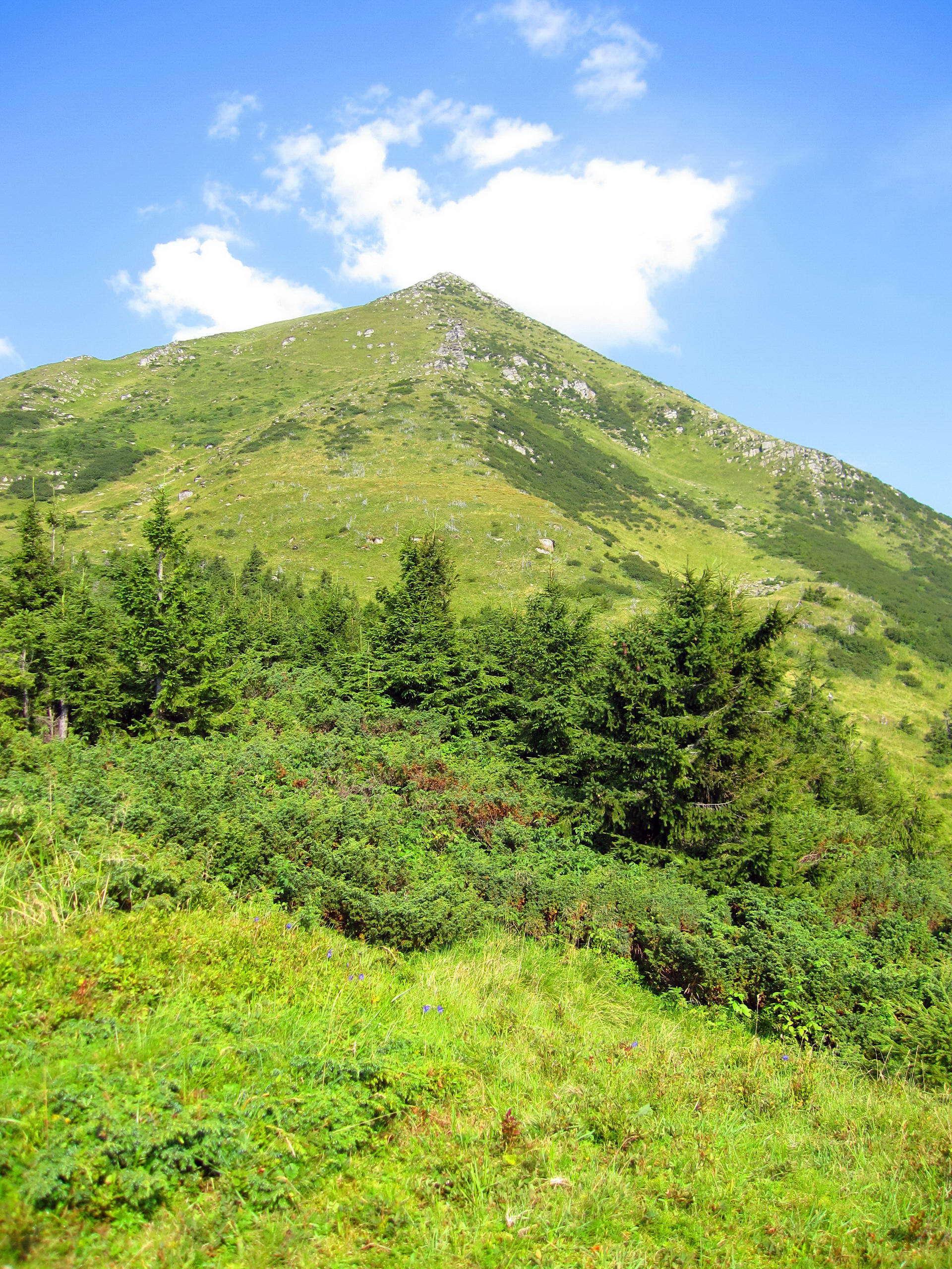 Маршрут Чорногорою, у підніжжі гори Петрос