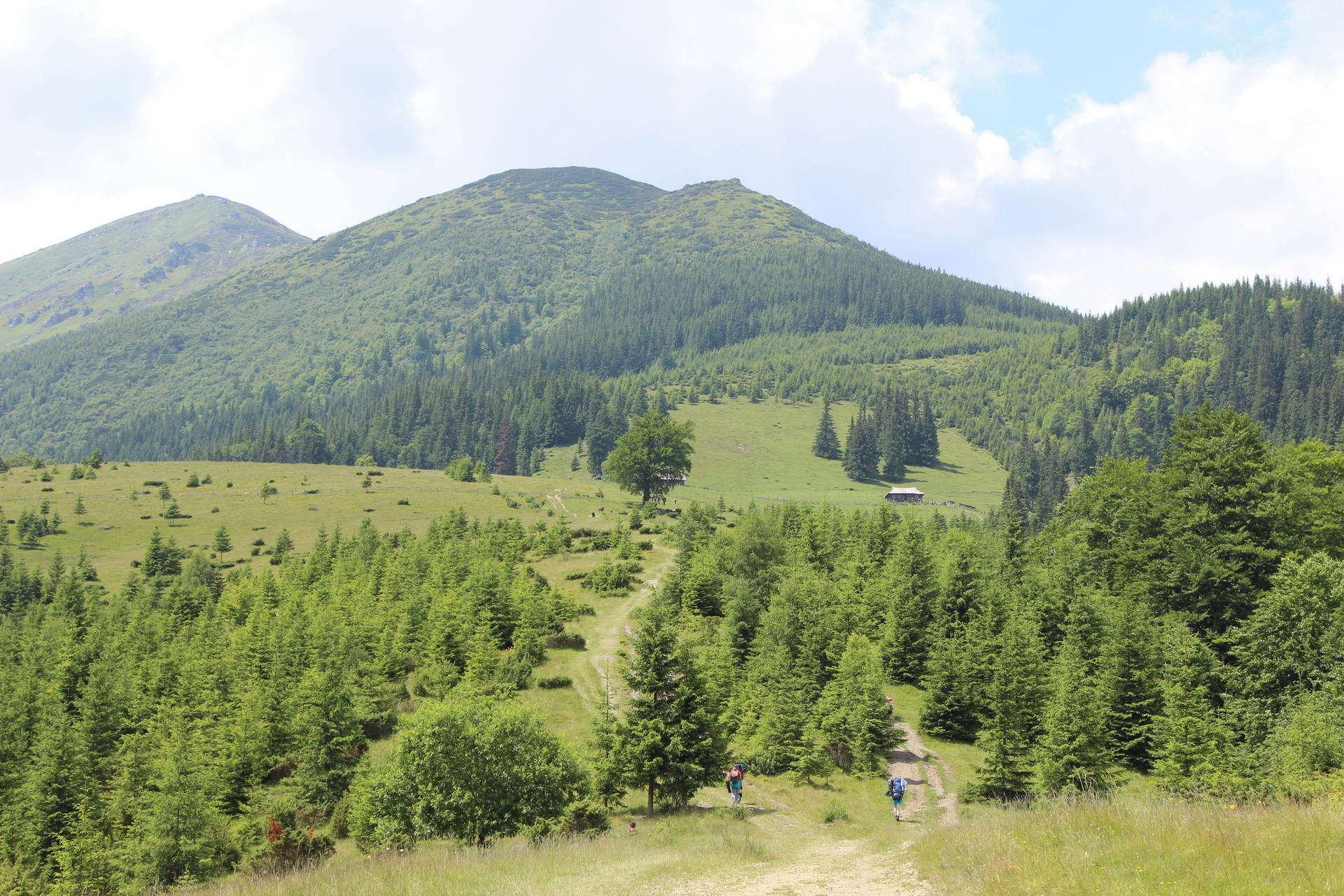 Вид на гору Смотрич, маршрут Чорногорою