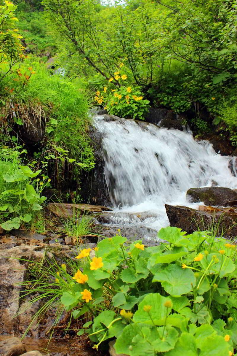 Дзембронські водоспади, маршрут Чорногорою