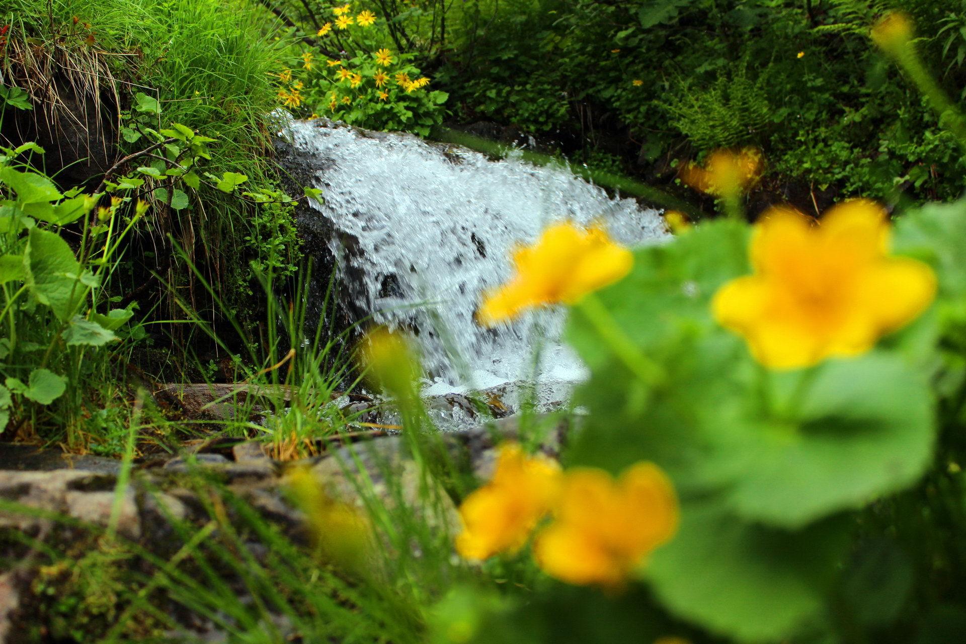 Смотрицькім (Дзембронські) водоспади, маршрут Чорногорою