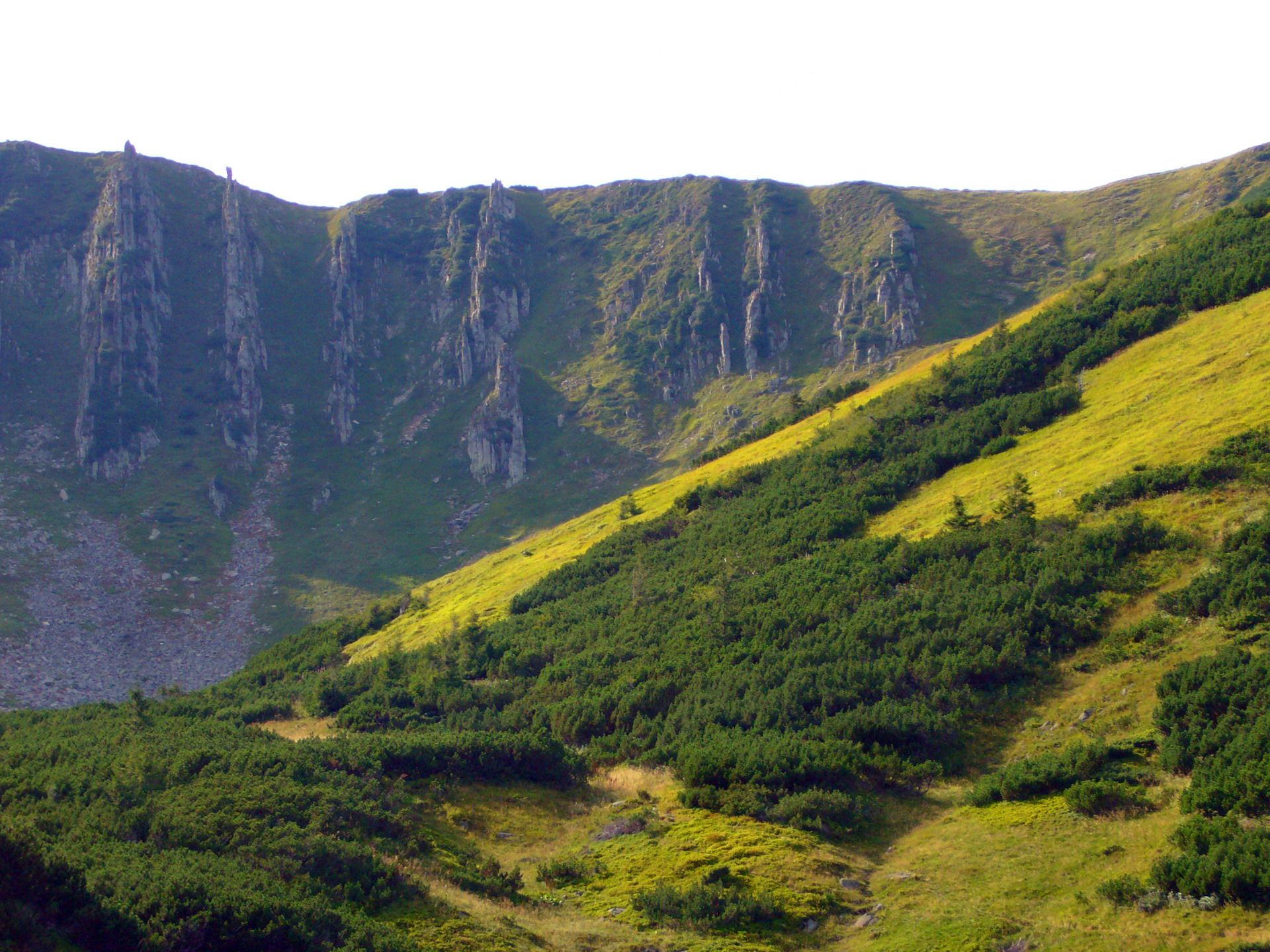Карпаты, вид на гору Шпицы