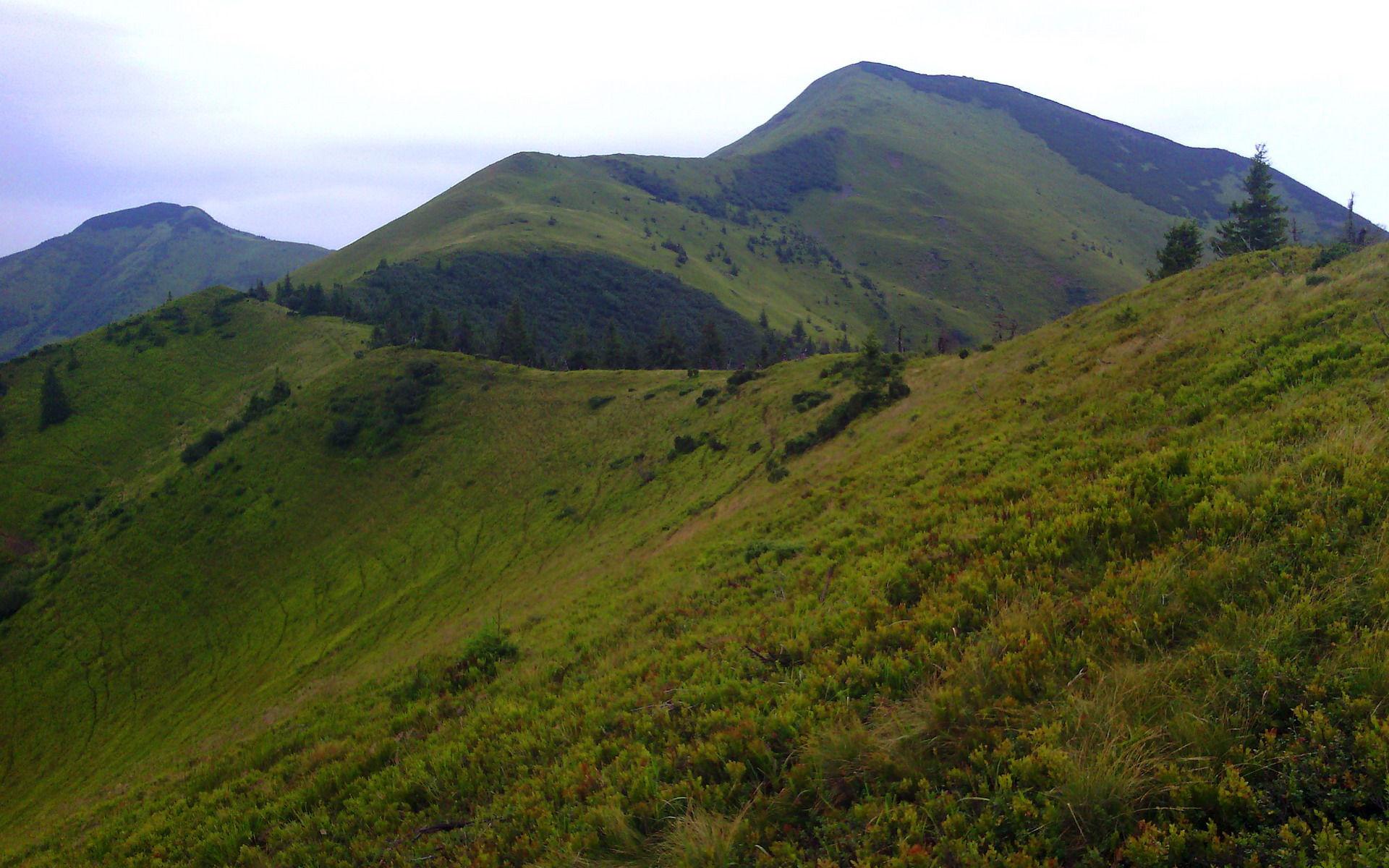 Карпати, маршрут на гору Стримба (1719 м)