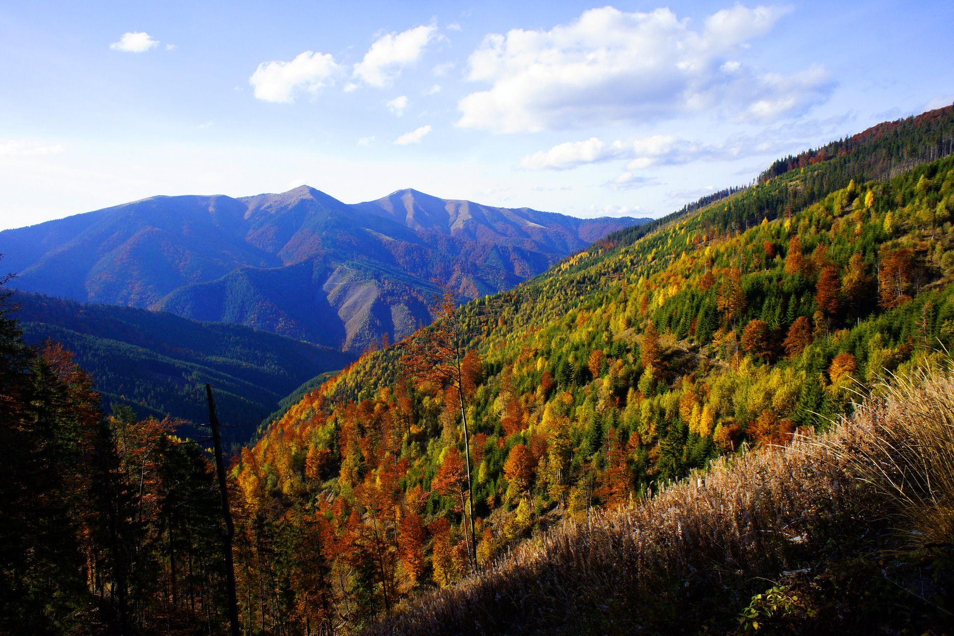 Сходження на гору Стримба, масив Горгани