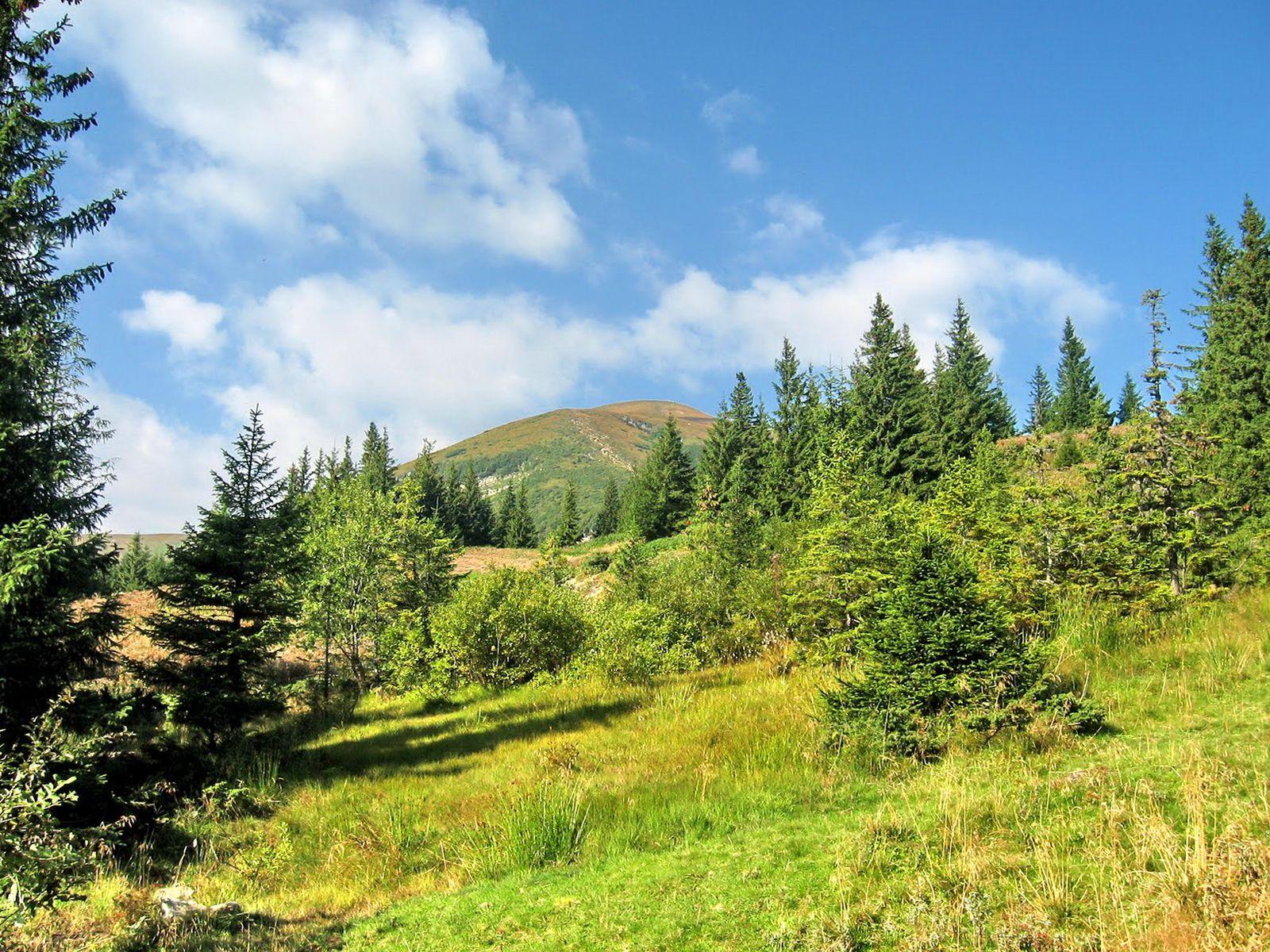 Туристичний маршрут на гору Говерла