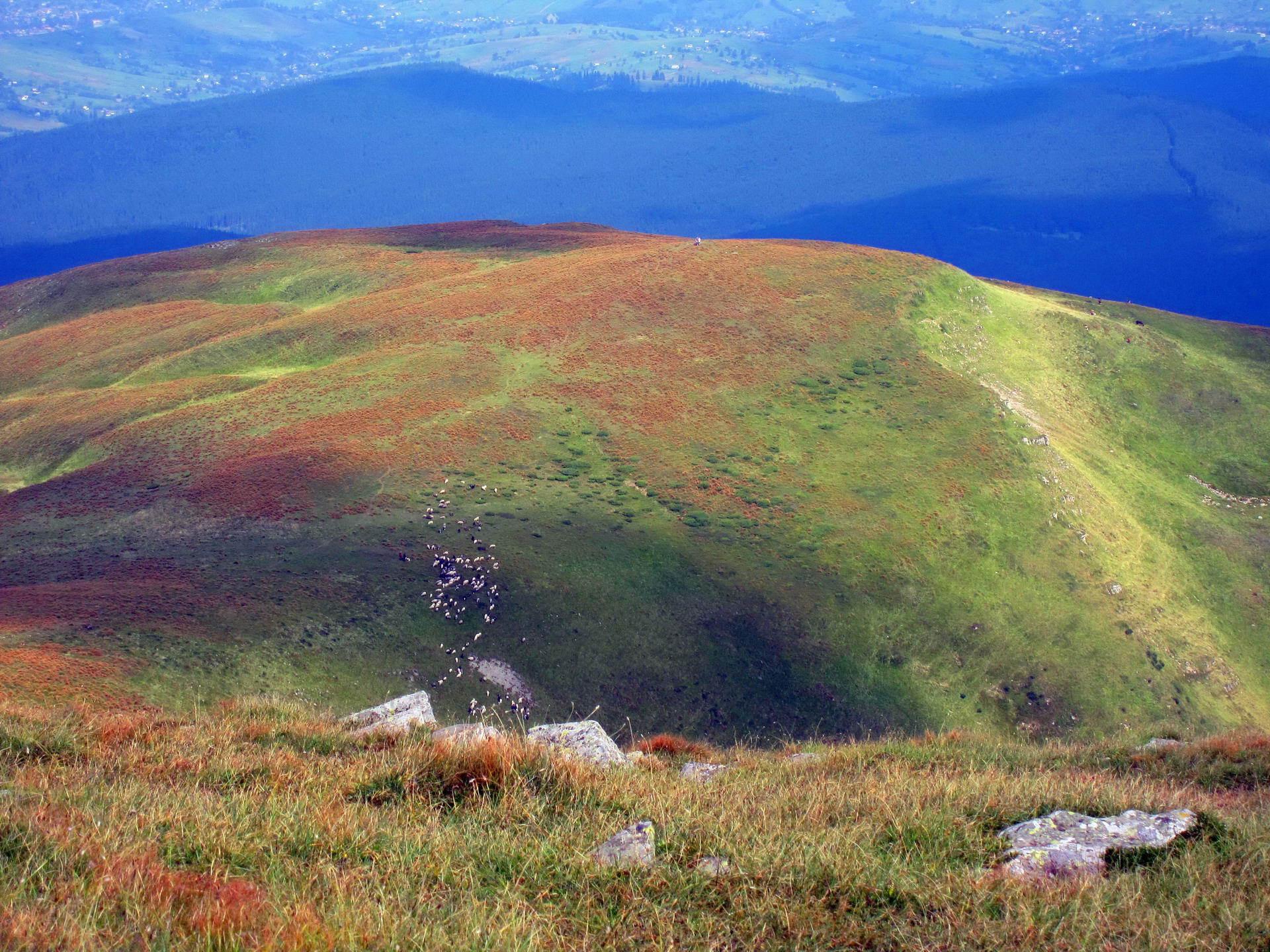 Вид із гори Петрос, масив Чорногора