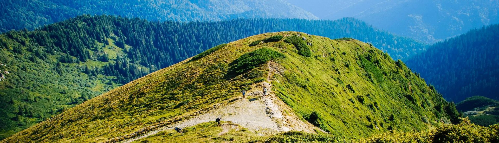 Сходження на вершину Піп Іван Мармароський