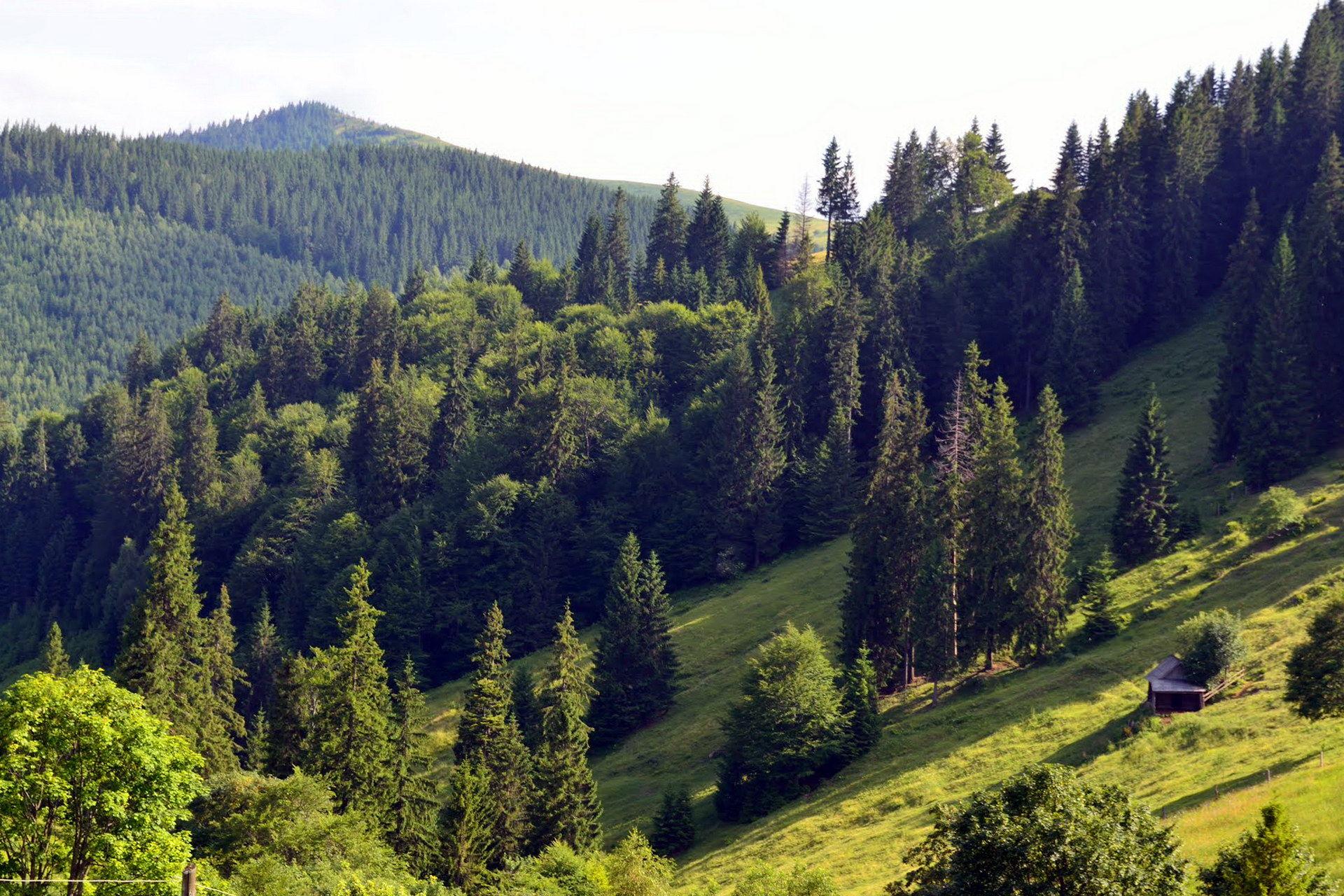 Карпати, маршрут на Писаний Камінь