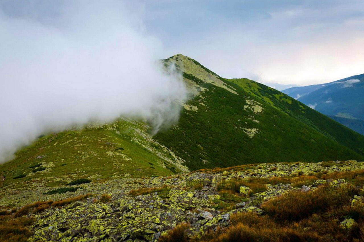 Масив Горгани, гора Велика Сивуля
