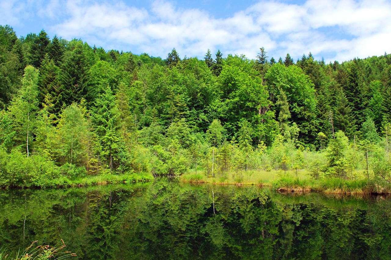 Озеро Журавлине, Сколівський район