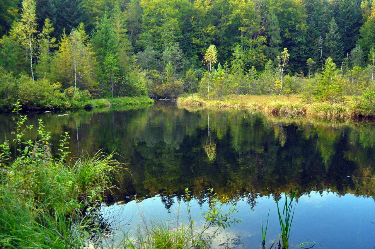 Озеро Журавлине, Львівська область