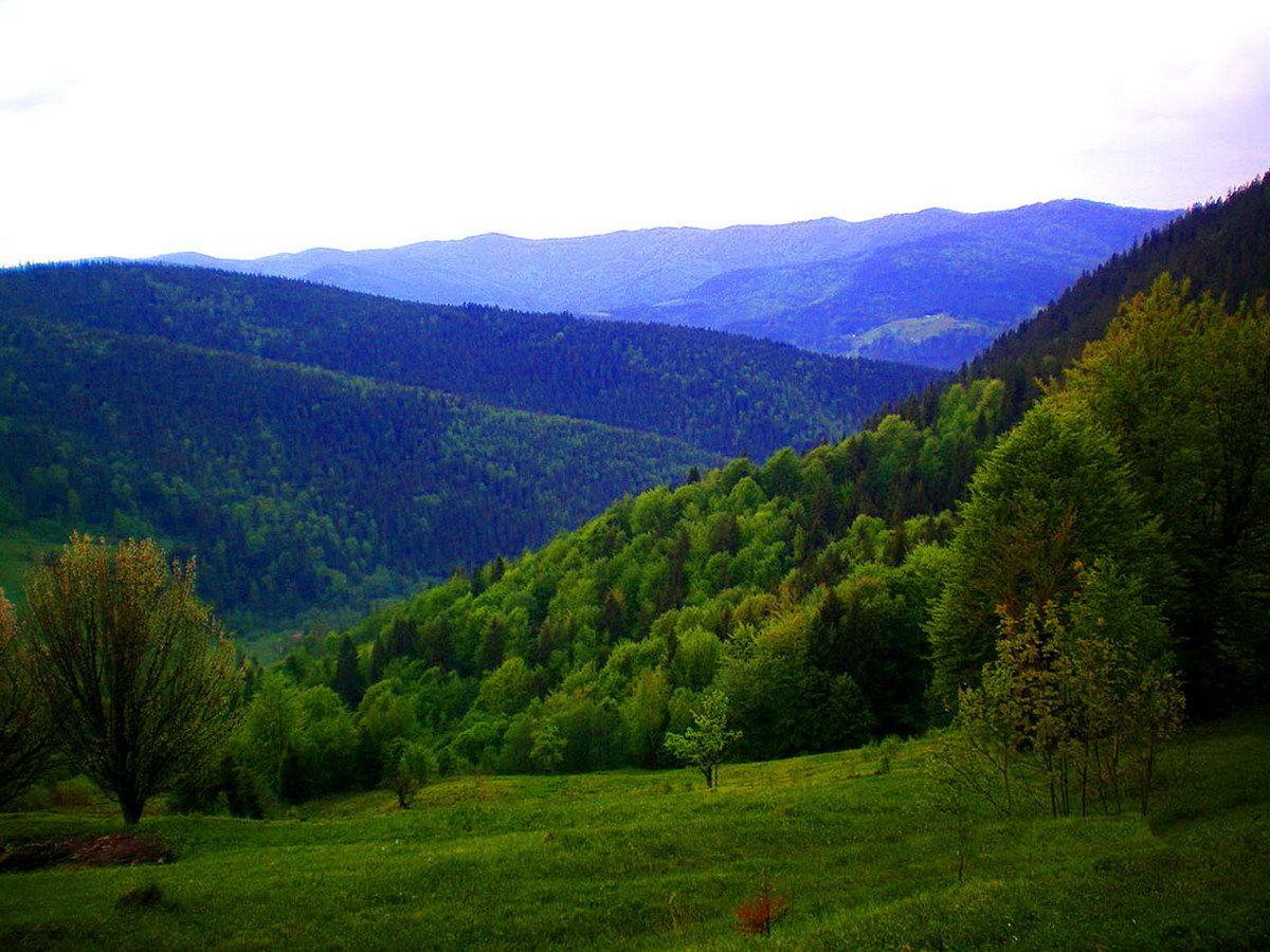 Карпати, Микуличин