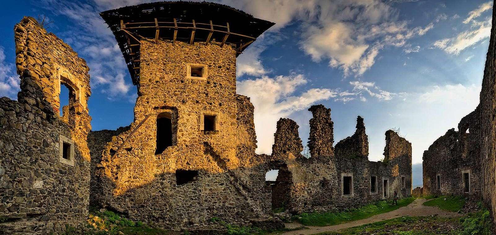 Невицький замок, Закарпатська область
