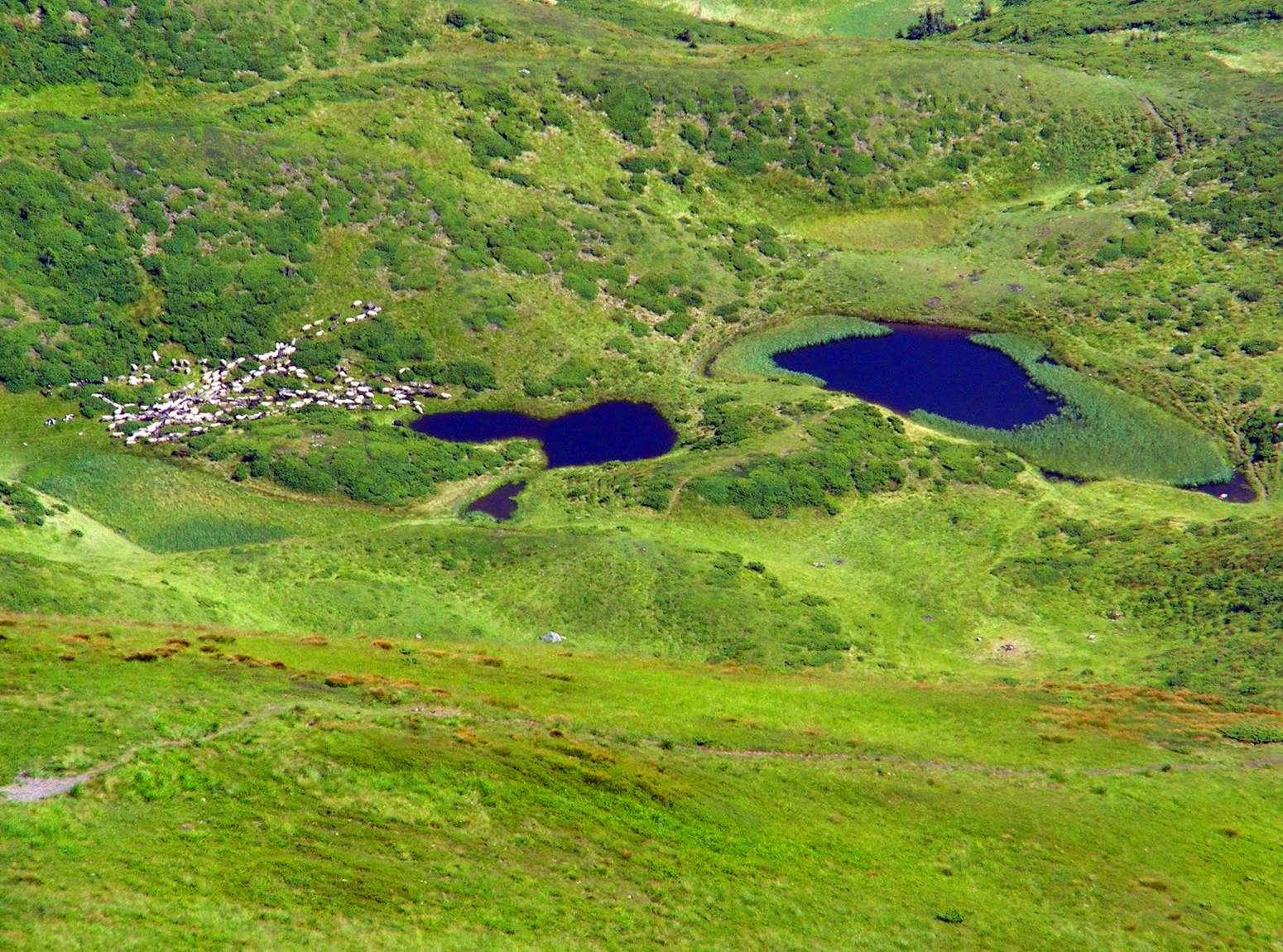 Закарпатська область, озеро Івор (Драгобратське)