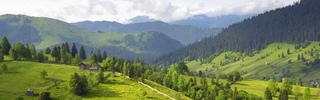 с. Поляниця, осіння панорама