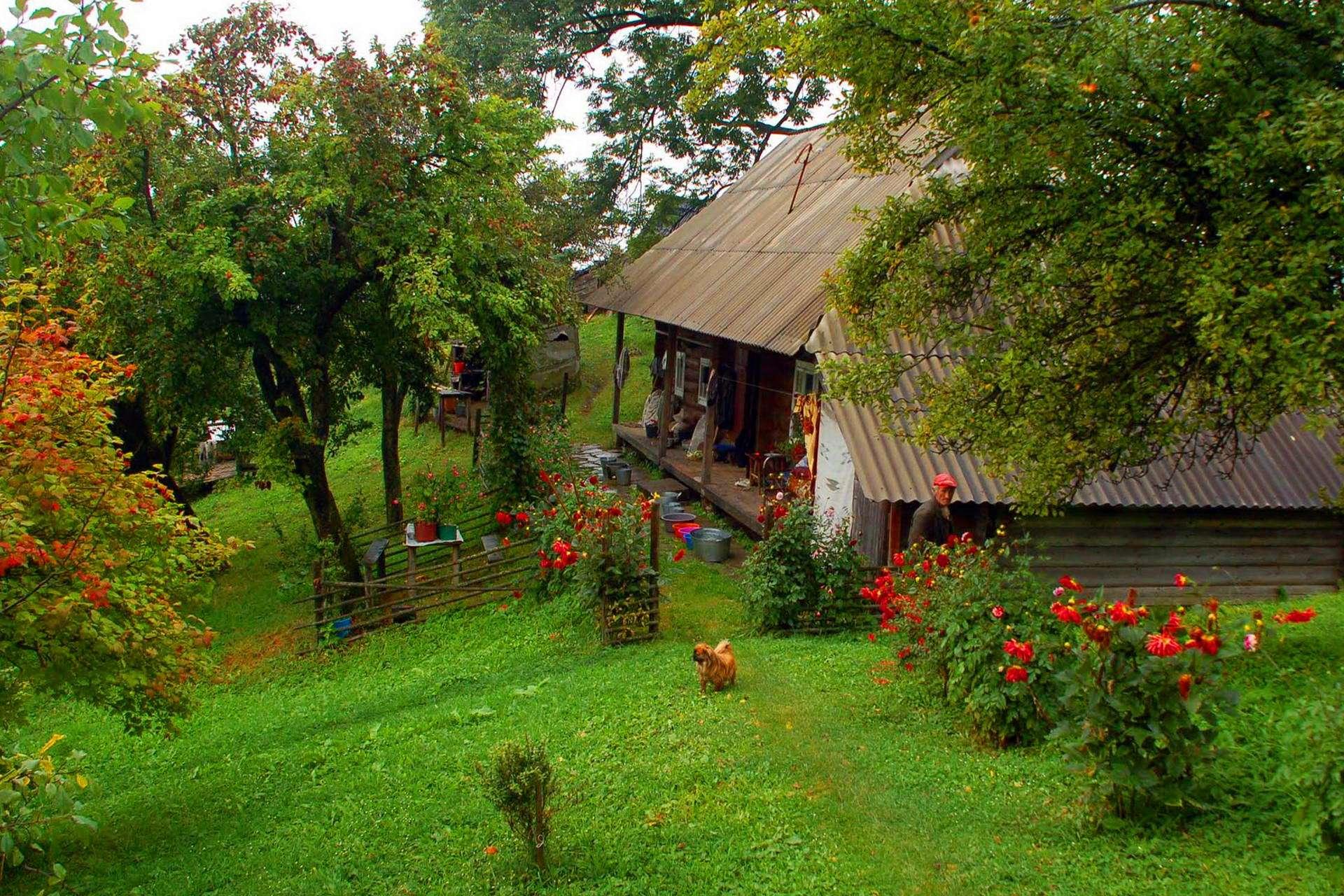 Прикарпаття, мальовниче село Шепіт
