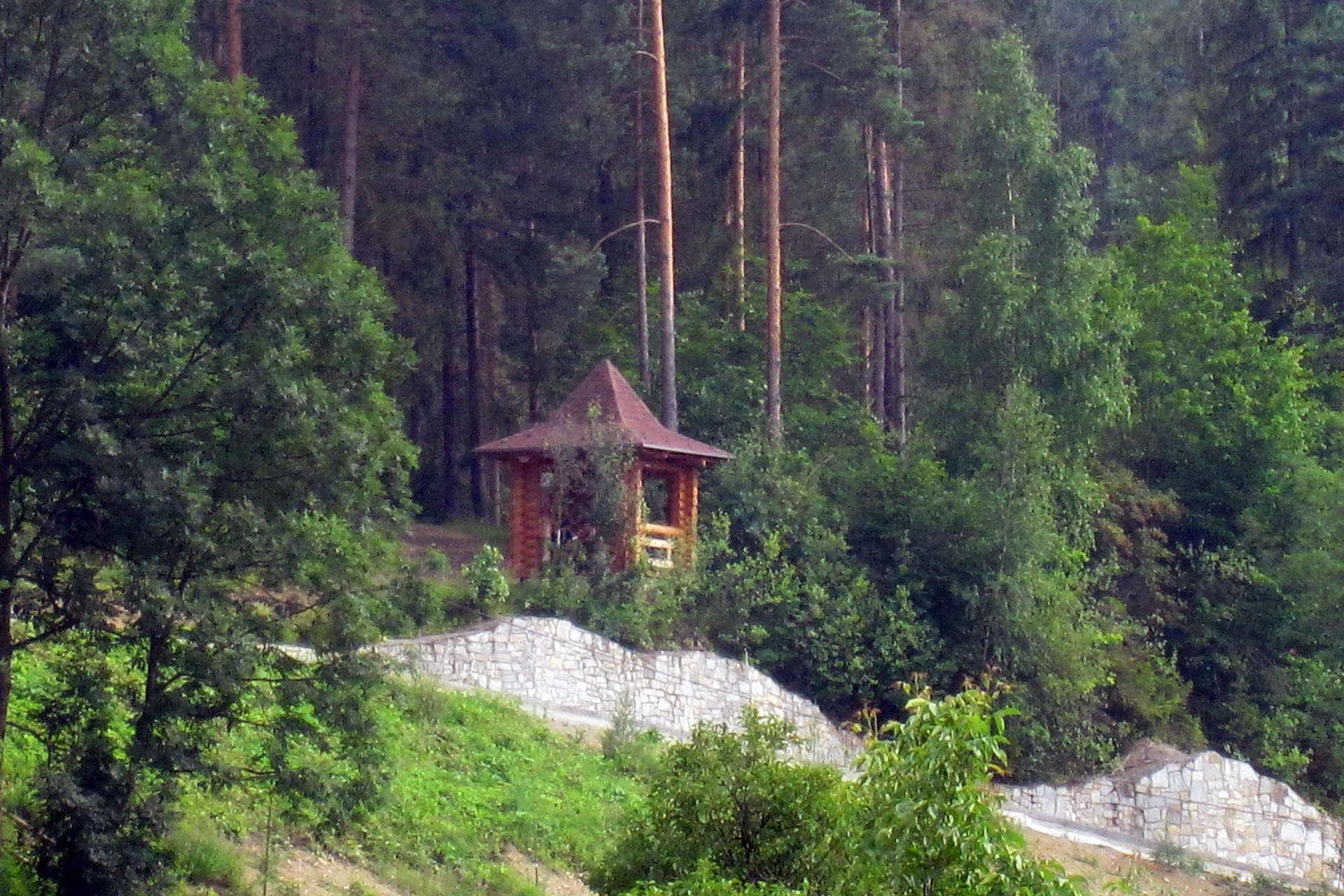 Курортне село Шешори в Карпатах