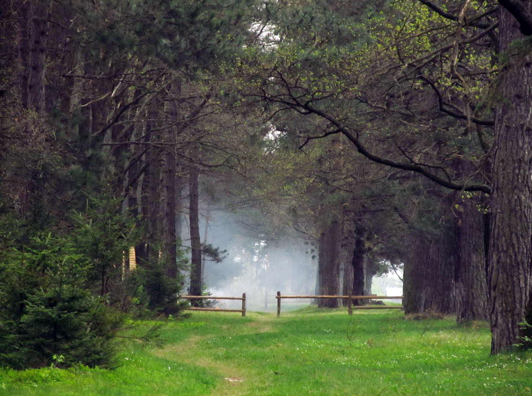 Богородчанський район, лісовий дім в смт Солотвин