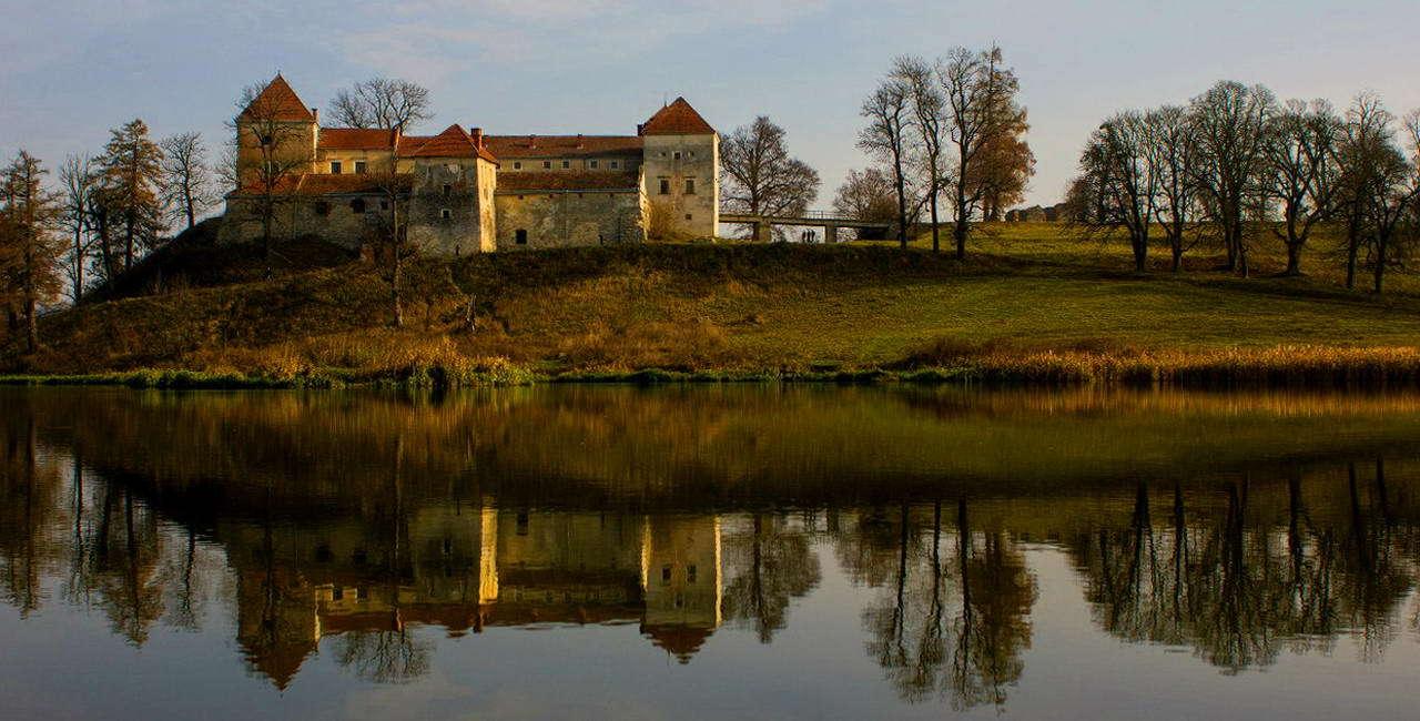Свірзький замок, Львівська область