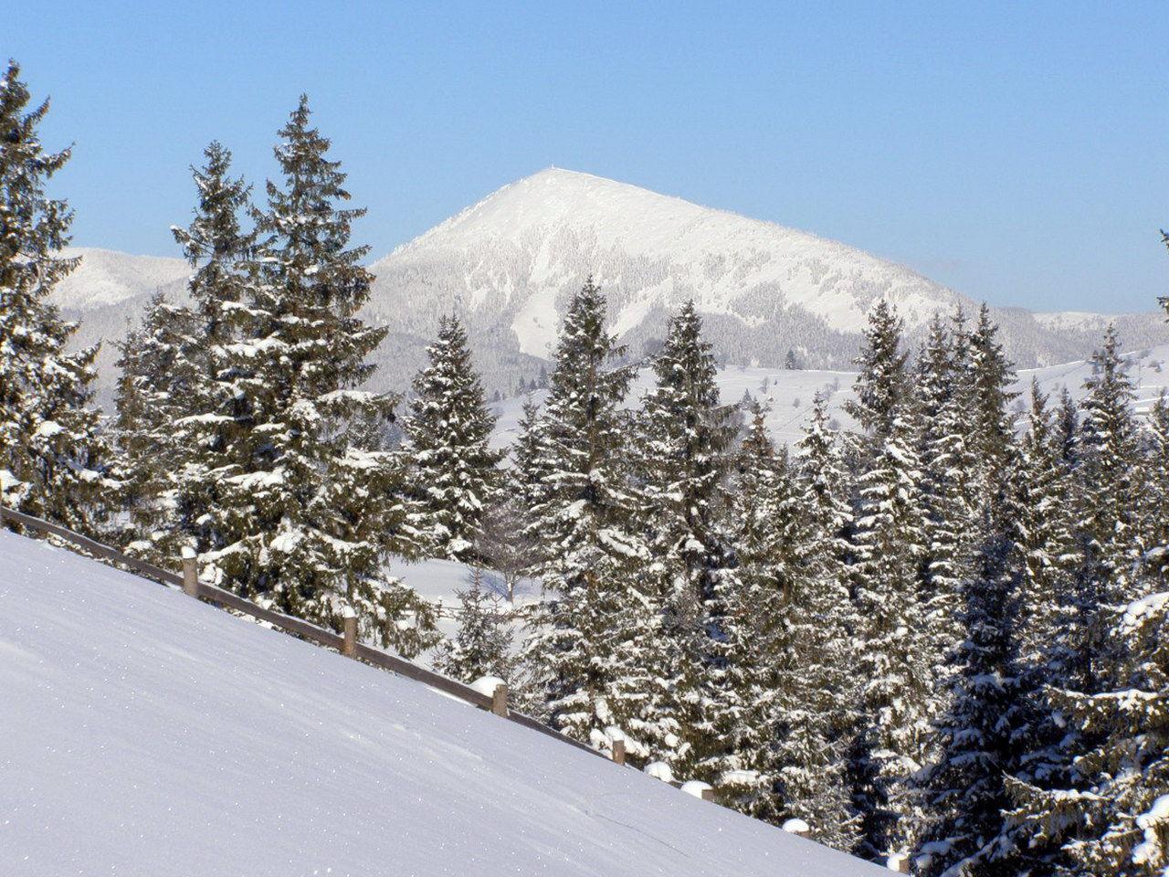 Зимовий вид гори Хом'як