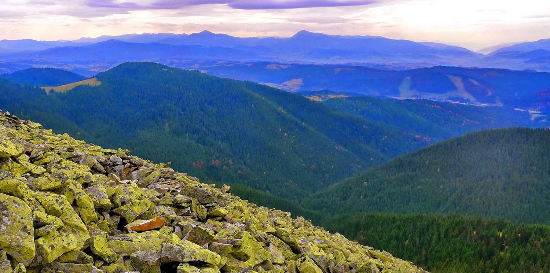 Фото на схилах гори Малий Горган