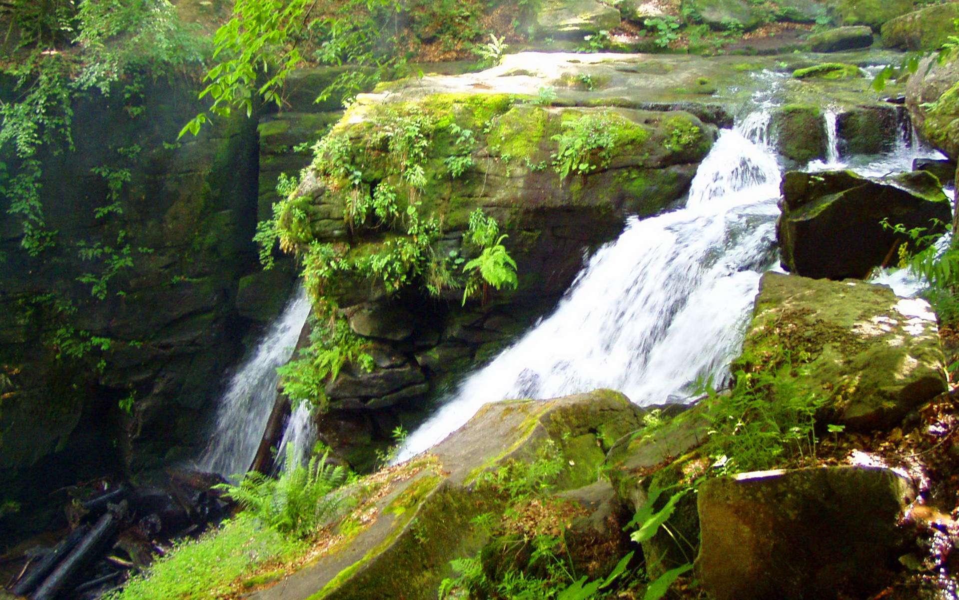 Водоспад Воєводин, гідрологічний пам'ятник Карпат