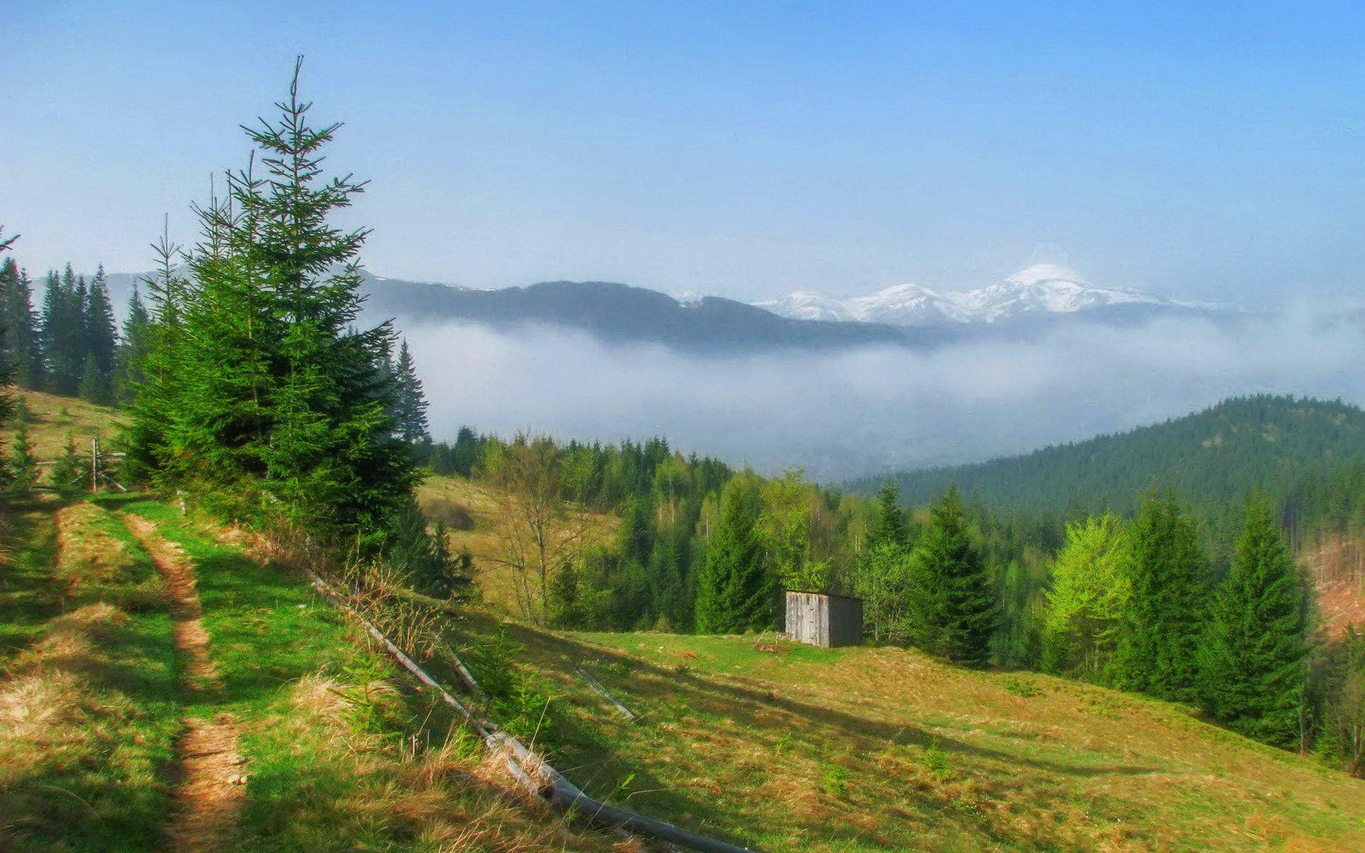 Карпатське село Волова